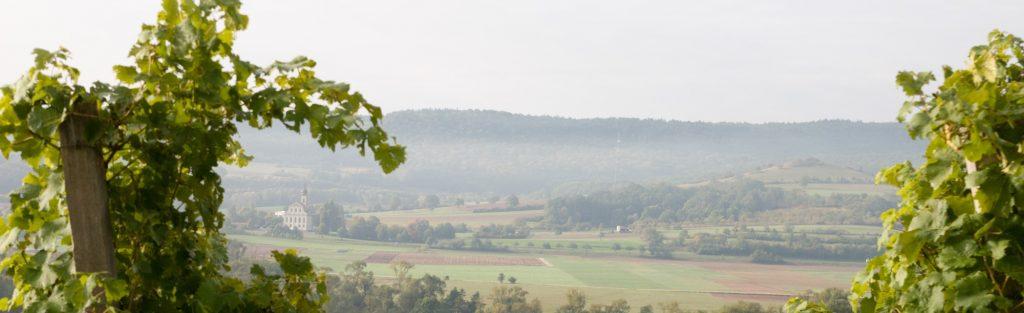 Blick aufs wunderschöne Maintal Weinhaus Zimmermann